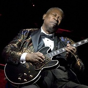 Обложка альбома The Rock 'N' Roll Hall of Fame - B.B. King