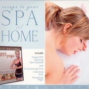 Обложка альбома Escape to Your Spa at Home: Cleansing Rain/Fantastical Flight