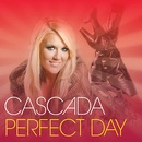 Обложка альбома Perfect Day