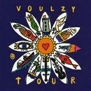 Обложка альбома Voulzy Tour