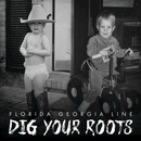 Обложка альбома Dig Your Roots