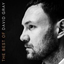 Обложка альбома The Best of David Gray