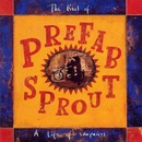 Обложка альбома The Best Of Prefab Sprout: A Life Of Surprises